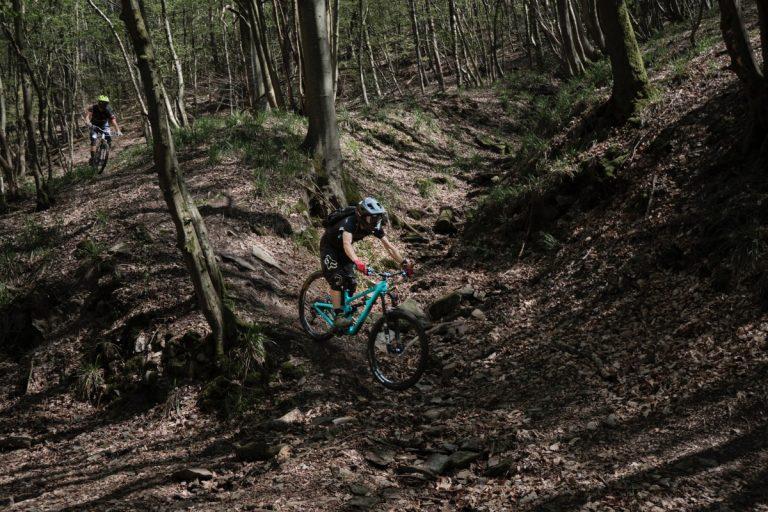 Ob schnelle Geschwindigkeit ab den Berg runter mit den Monsterrollern oder mit einer ausführlichen E-Bike- oder Mountainbike-Tour: erkundet den Harz von allen Blickwinkeln!
